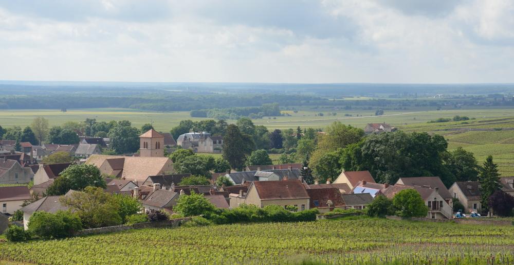 Gevrey Chambertin, Burgundy