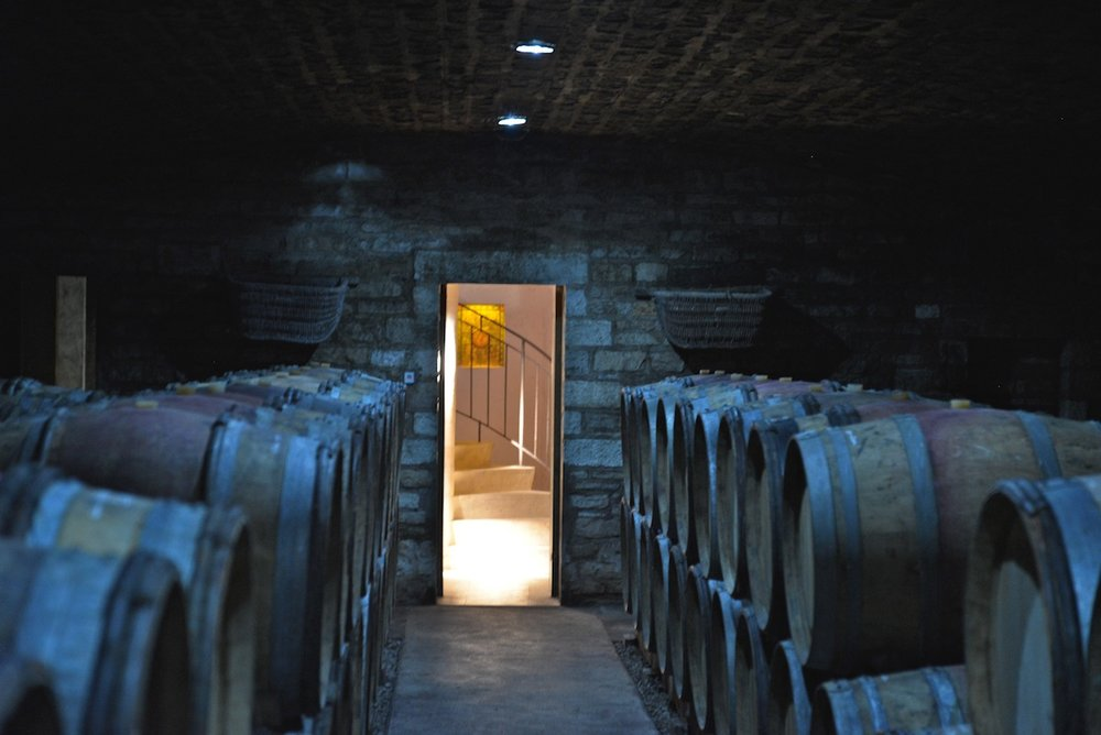 The cellars of Rossignol-Trapet