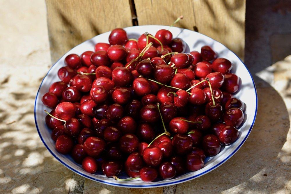 A bowl of Burgundy cherries