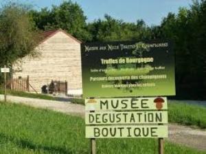 Location :Route de Villers, 21700 Marey-lès-Fussey