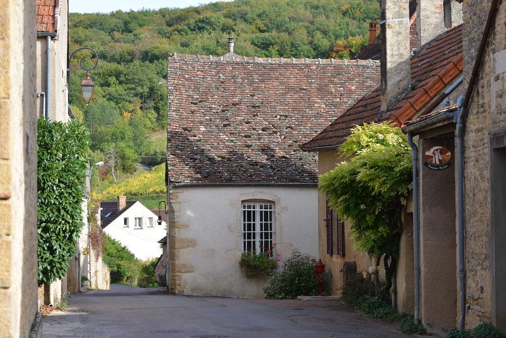 Domaine Pavelot, Pernand Vergelesses, Burgundy