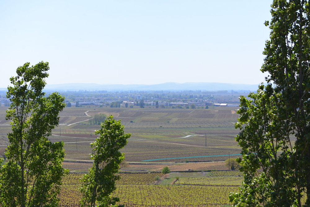 Beaune from the Hill of Corton
