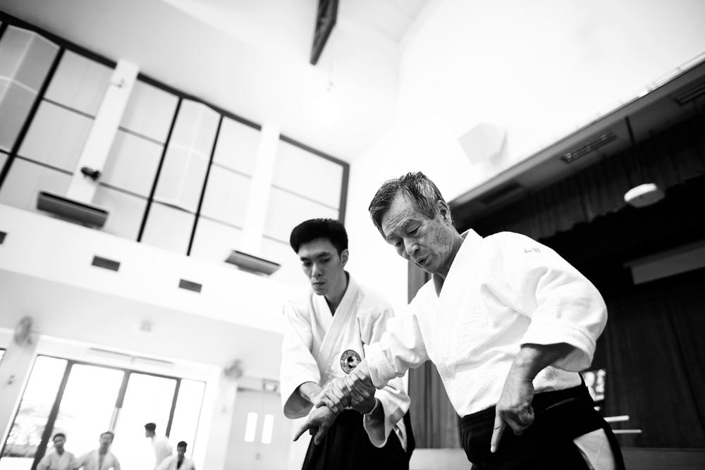 Aikido Tai Shin Kai - Yamada Shihan.jpg