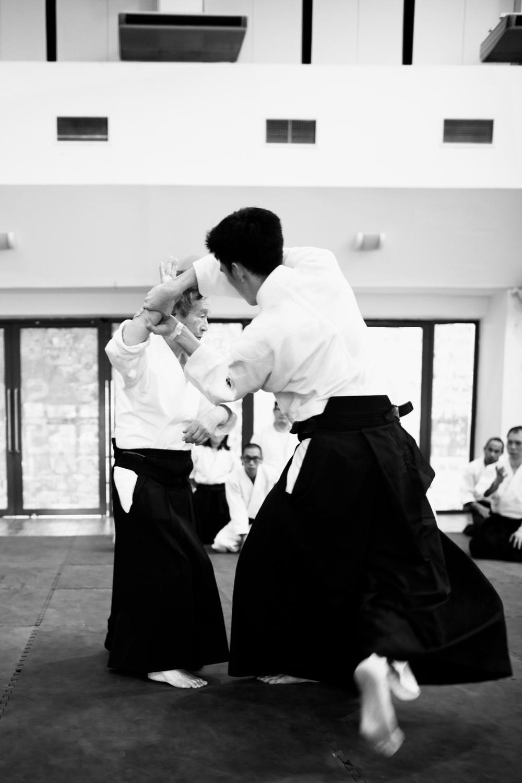 Aikido Uke.jpg