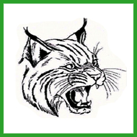 Elgin Wild Cats