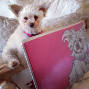 Tibi and her Society6 MacBook case
