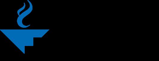 ACHE Logo.png