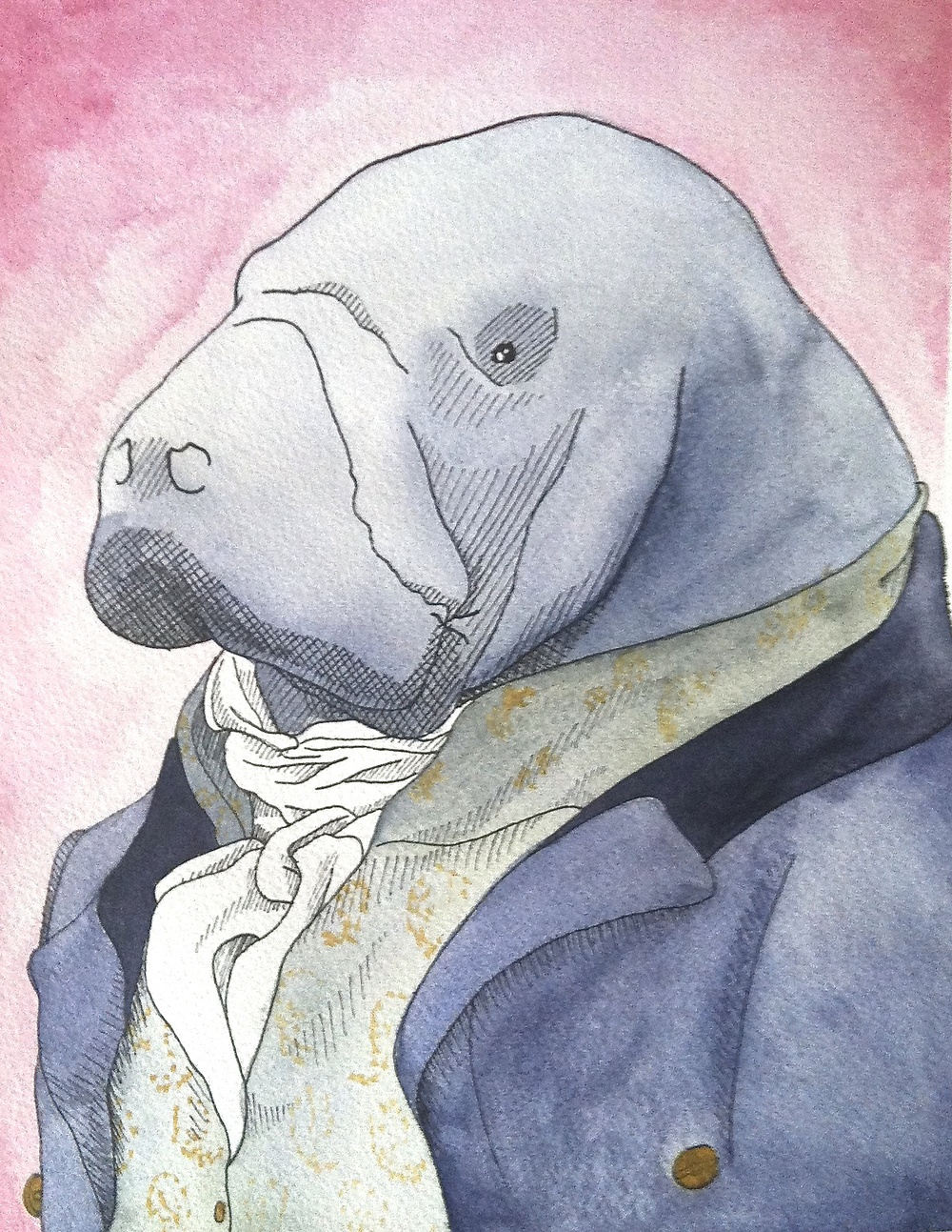 Monsieur Manatee    9 x 12  pen and watercolor  2013  NFS