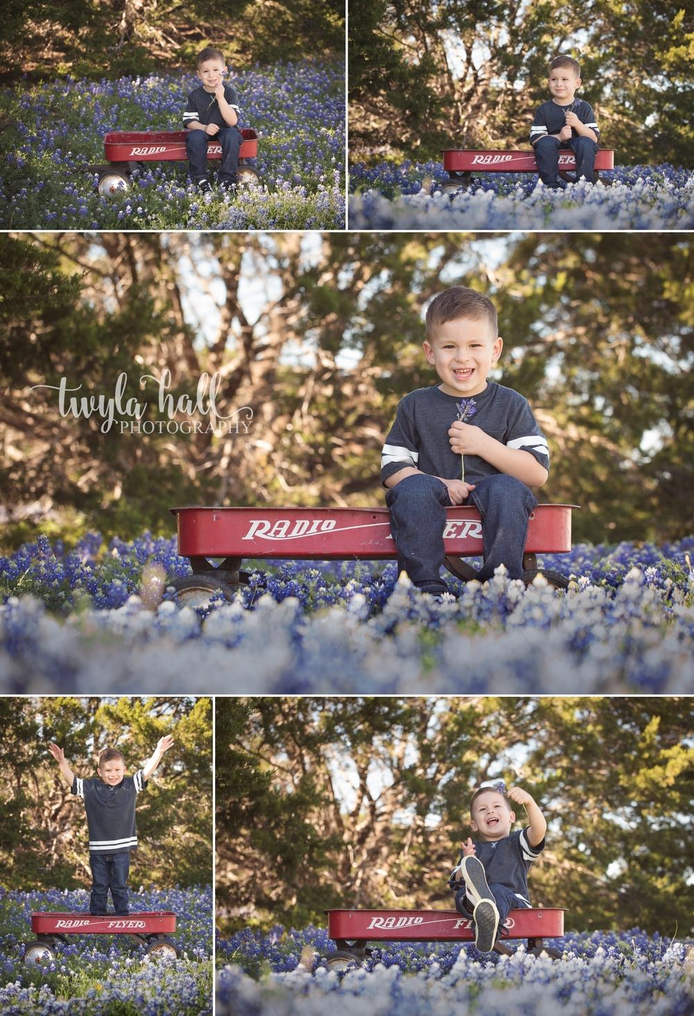 Bluebonnets-Austin-Georgetown-Texas-Spring-1