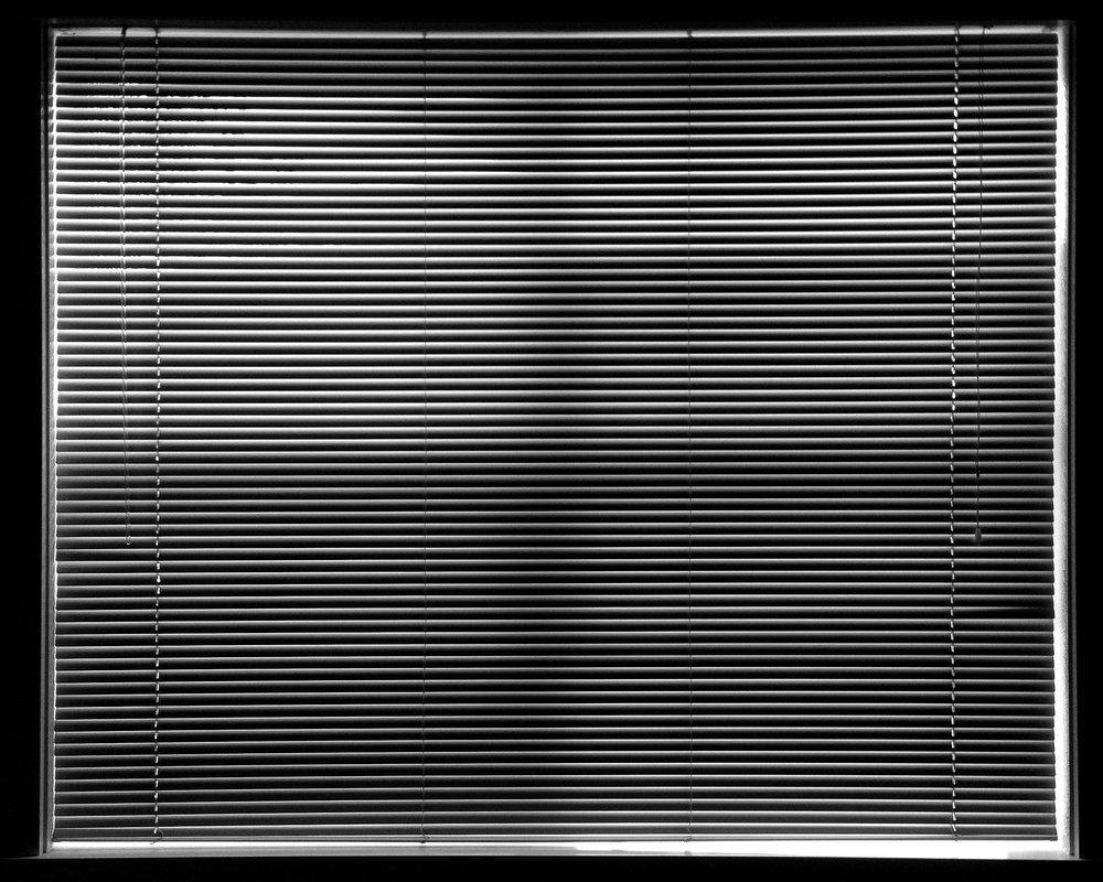 Blinds, 2014