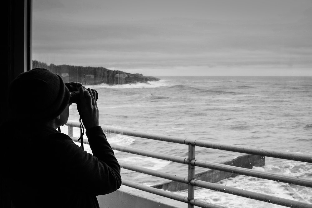 Whale Watching, Depoe Bay, Oregon, 2015