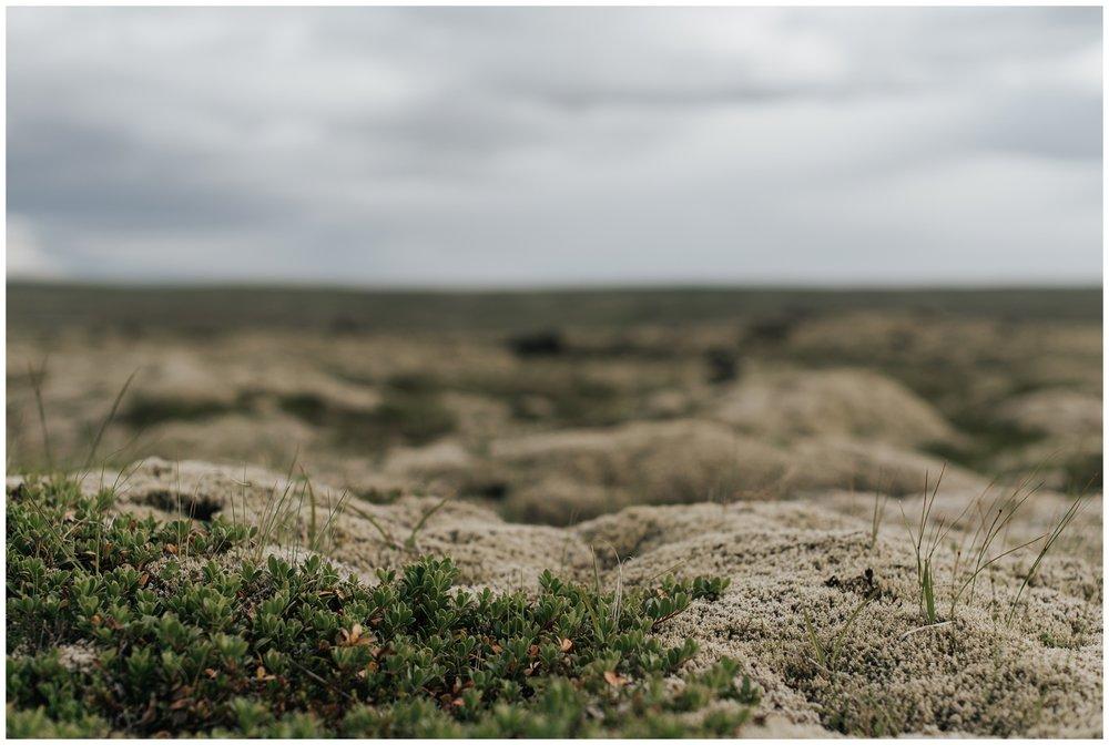 IcelandWeddingEngagementPhotographers_0002.jpg