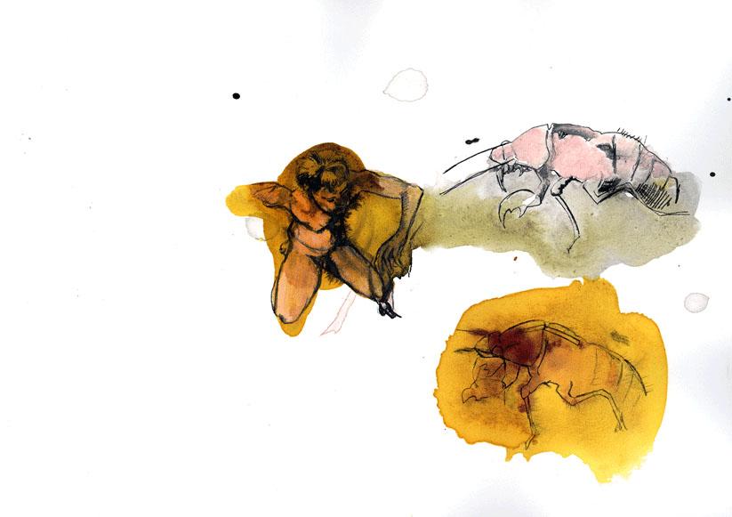 drawings0709_06.jpg