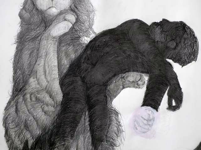 drawings0709_51.jpg