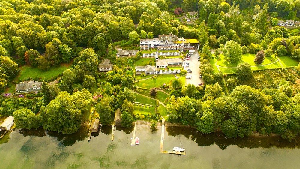Lake District Beech.jpg