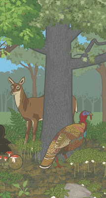 Dowd with the Visual Communications Research Studio [illustrator/creative director]  Woodland Biome Mural,  detail, from MySci Hands On Science, 2005-2006
