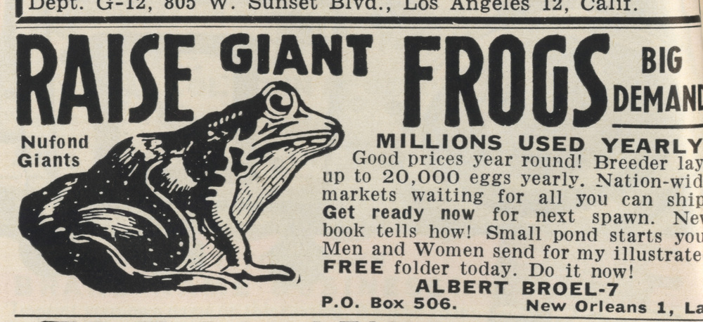 Massive  frogs from Louisiana. The Nufend Giants. Mutants, most likely.