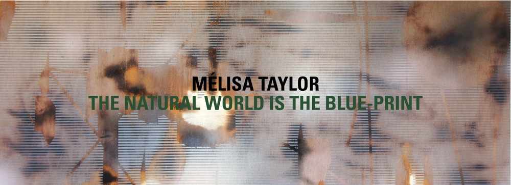 Melisa-Taylor.jpg