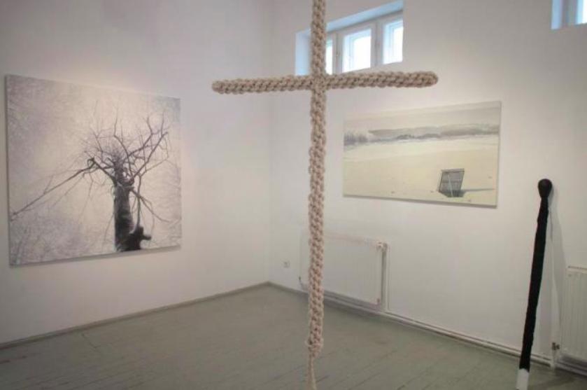 Ana Poterasu Gallery