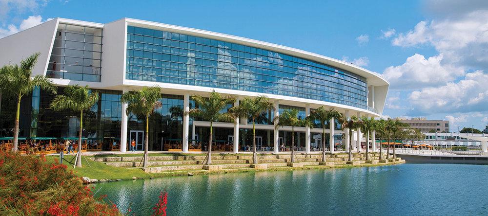 University of Miami 1.jpg