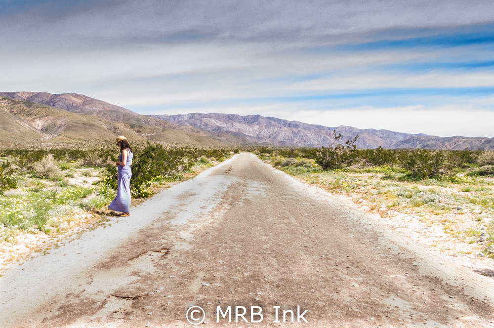 Jane on a Desert Road