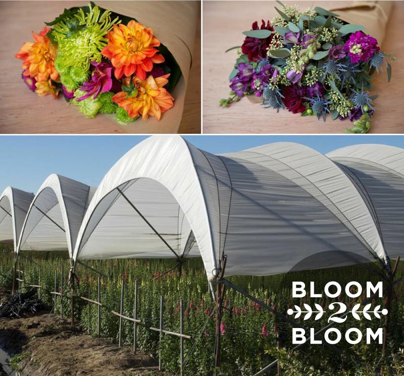 Bloom2Bloom