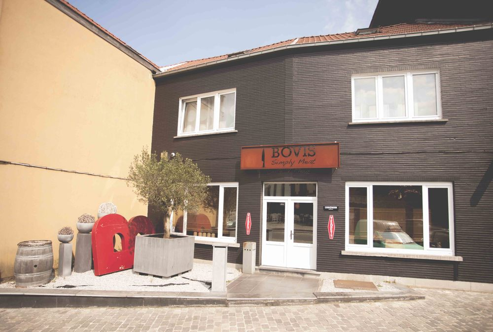 Bovis1.jpg