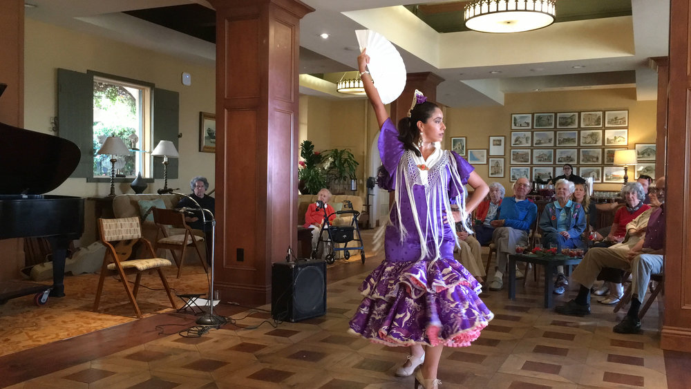 Flamenco at CDM Purple.jpg