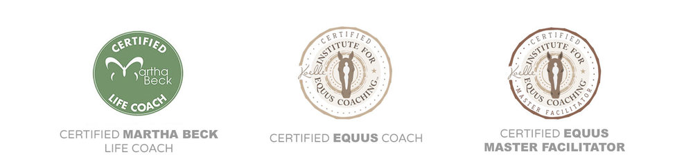 certification seal for website with captions and master facilitator.jpg