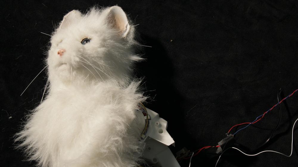 Lulu, hacked animatronic cat, GHOST OF XMAS PRESENT