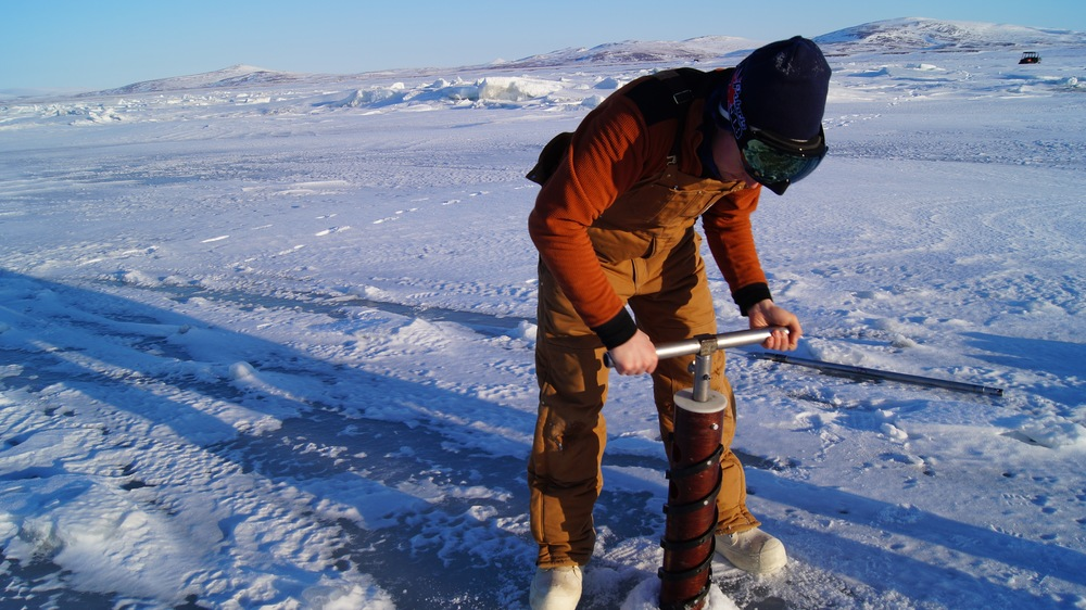 Oliver Damman conducting sea ice coring  Photo by Sarah Betcher