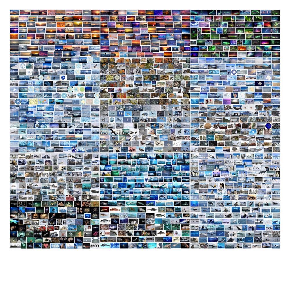 antarctica - Google Search.jpg
