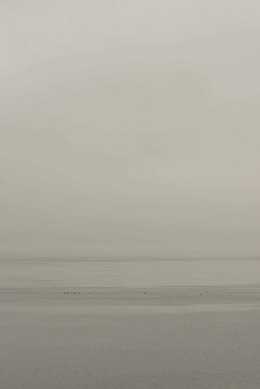 Puget Sound (1).jpg