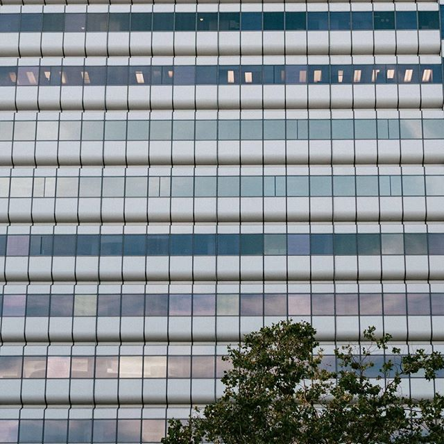 Look at these pretty hues...👌🏼🌿finding inspiration, when you're not always looking for it.⠀ .⠀ .⠀ .⠀ .⠀ .⠀ #oakland #eastbay #thebayarea #architecturelovers #lookup #hue #inspiration #color #lifeincolor #sunset