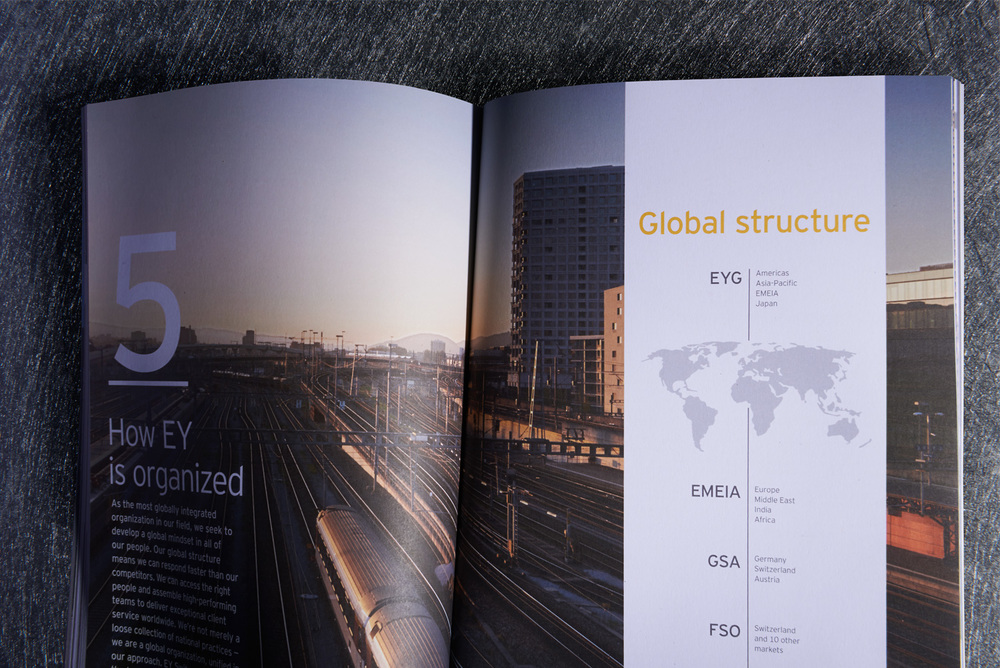 EY Switzerland - Annual Report 2014
