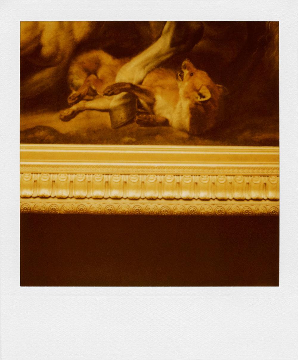 polaroid-22.jpg