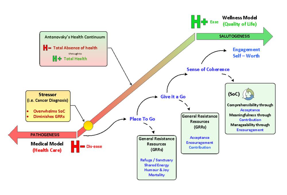 wellness diagram.png