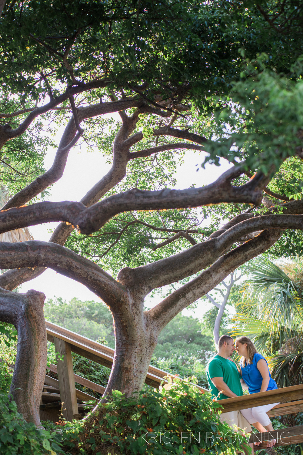 dubois-park-engagement-photos-big-tree