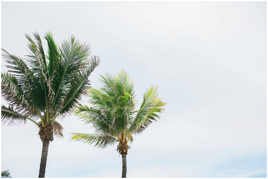 south-florida-wedding-photographer-0019.jpg
