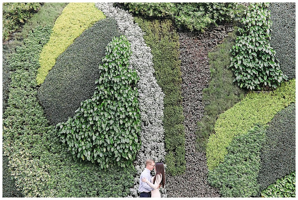 manicured greenery at worth avenue
