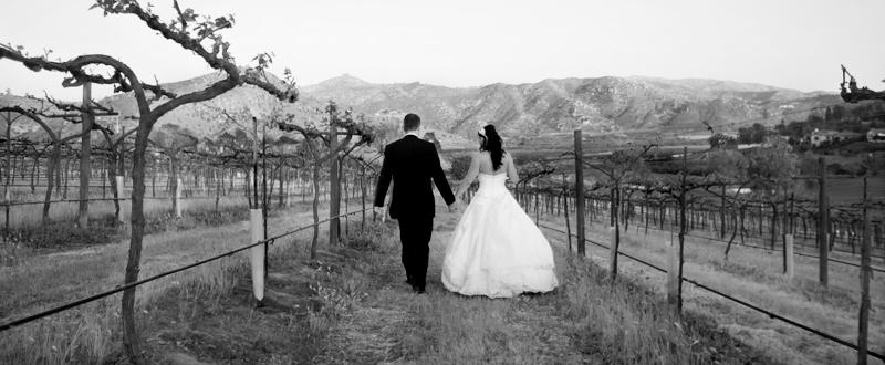 Angela & John Hicks |  ORFILA WINERY