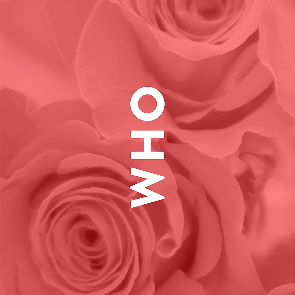 1_whowhatwhy.jpg
