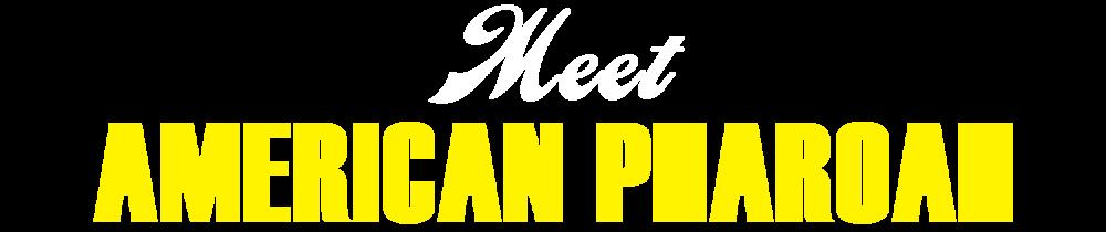 Meet AP-01-01.png