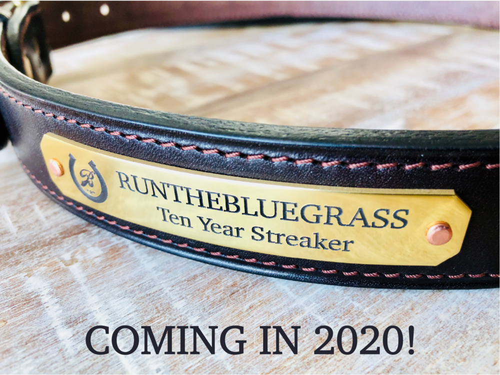 Coming in 2020 10 Year Streaker Belt-01-01.png