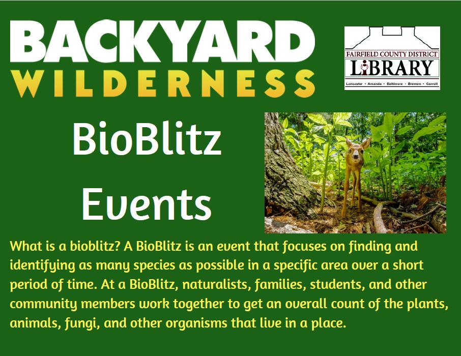 Backyard Wilderness Bioblitz post card 1.JPG