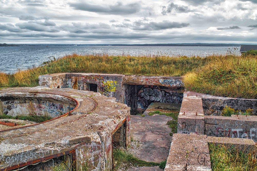 Newfoundland-1.jpg