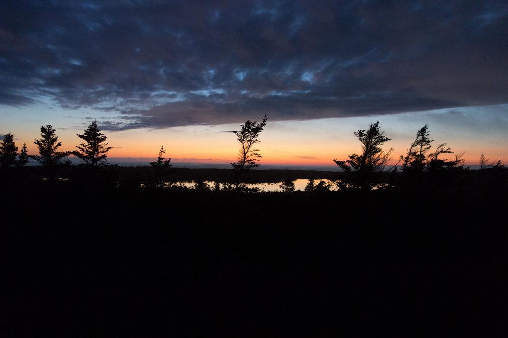 Newfoundland-3.jpg