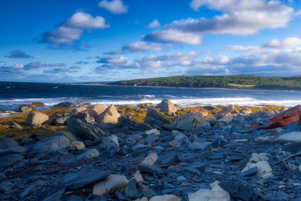 Newfoundland-15.jpg