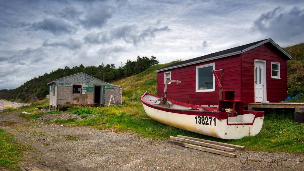 Newfoundland-28.jpg