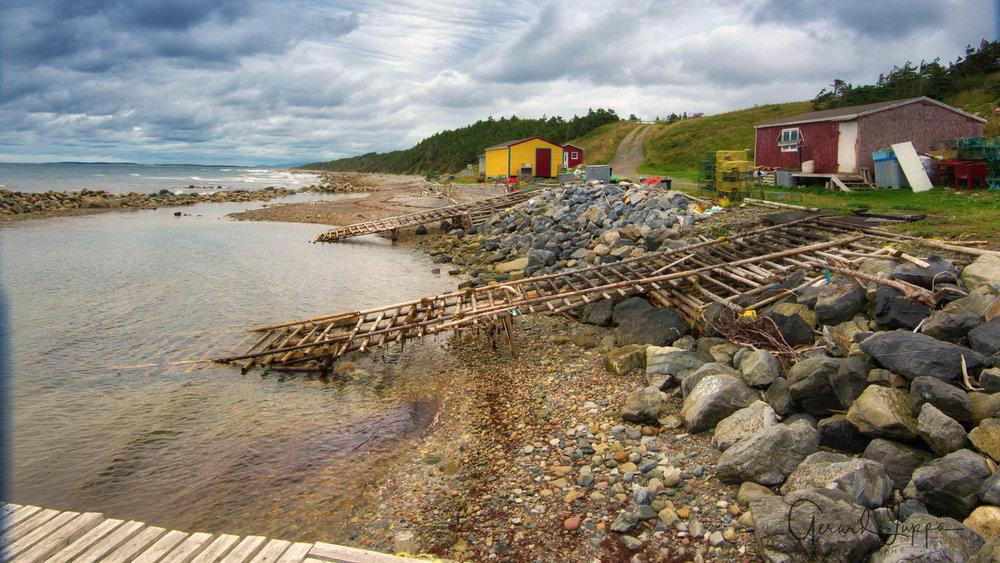 Newfoundland-29.jpg